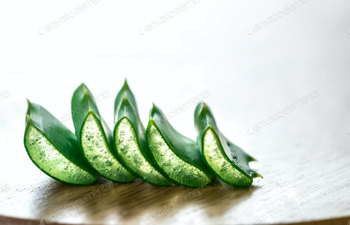 Fresh leaves of Aloe Vera