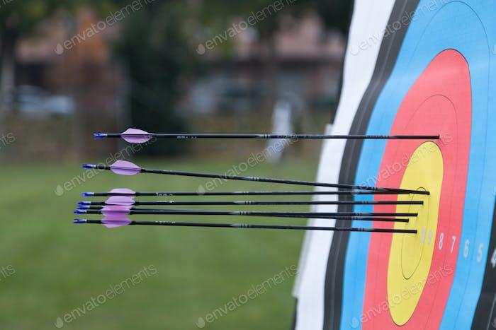 Objetivo de tiro con arco con flechas en él