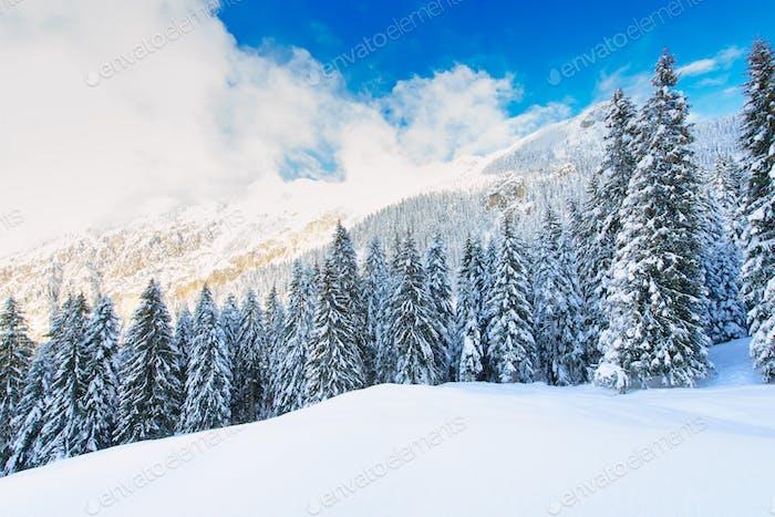 Snowy winter mountain
