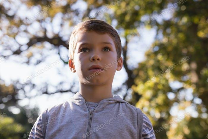 Low-Winkelansicht des Jungen gegen Bäume
