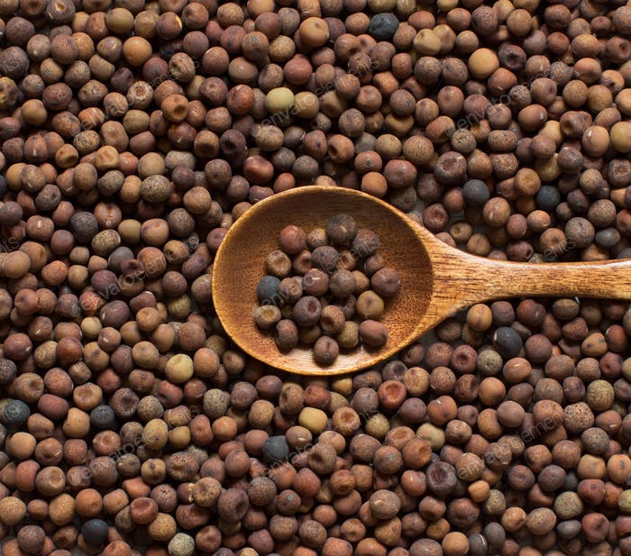 Raw organic roveja beans with a spoon