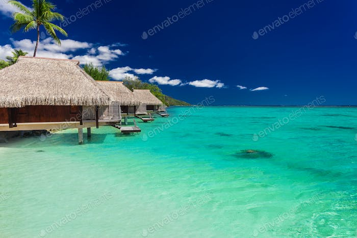 Best overwater bungalows on a tropical island with vibrant beach