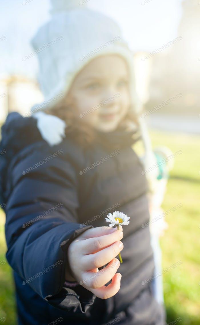 Girl toddler holding a daisy flower.