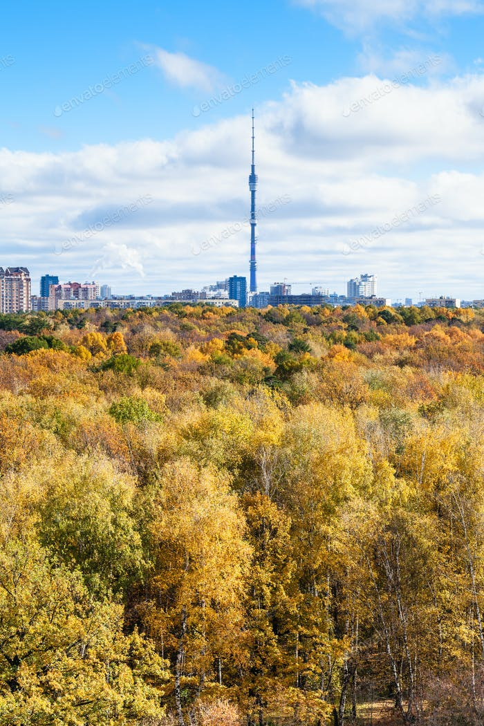autumn forest and city with tv tower on horizon