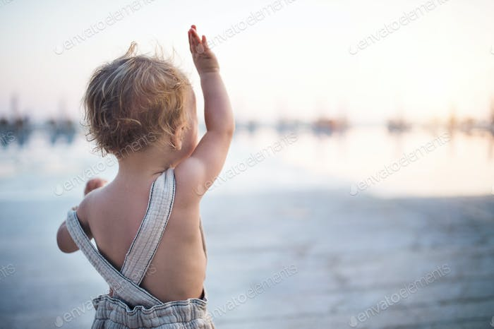 A rear view of small toddler girl standing on beach on summer holiday.