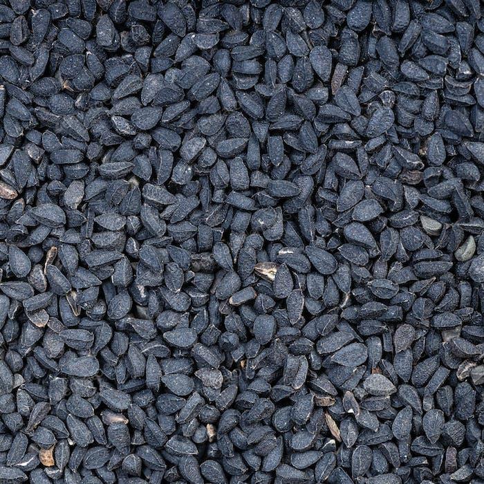 Nigella sativa seeds (black caraway) close up