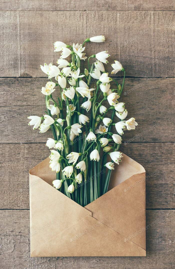 bouquet of fresh snowdrops in the mail envelope on a wooden background