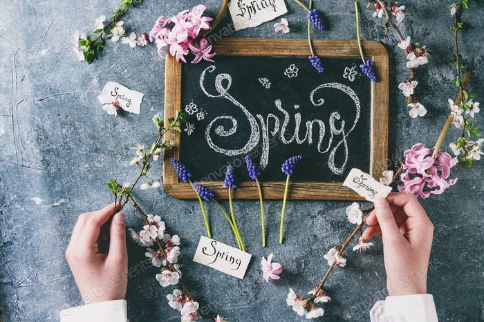 Frühlingsblüten Blumen