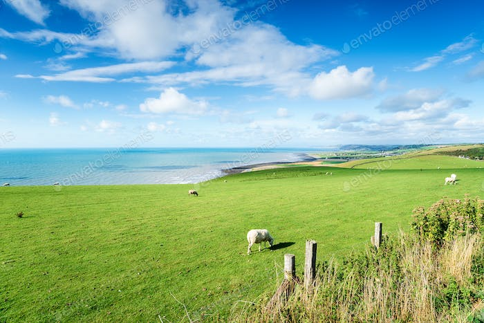 The Ceredigion Coastline in Wales