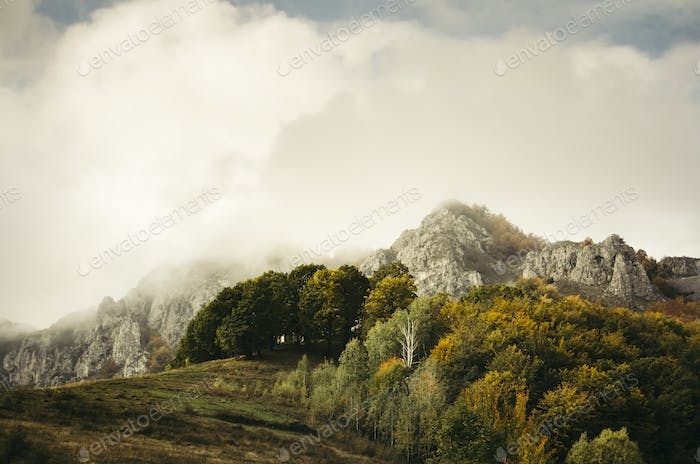 Misty autumn morning landscape. Mountain peak in fog and trees w