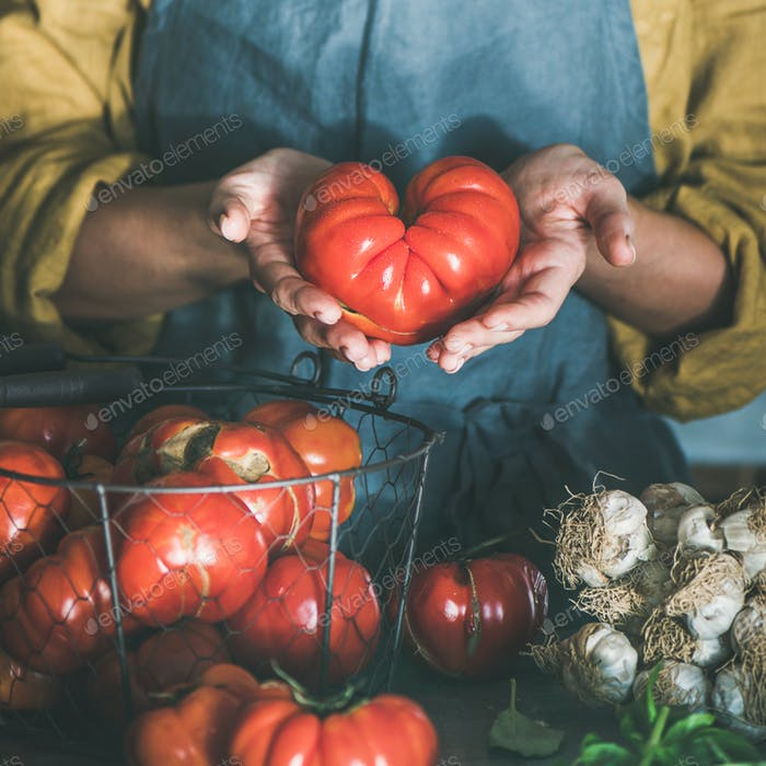 Woman in linen apron holding ripe heirloom tomato, square crop