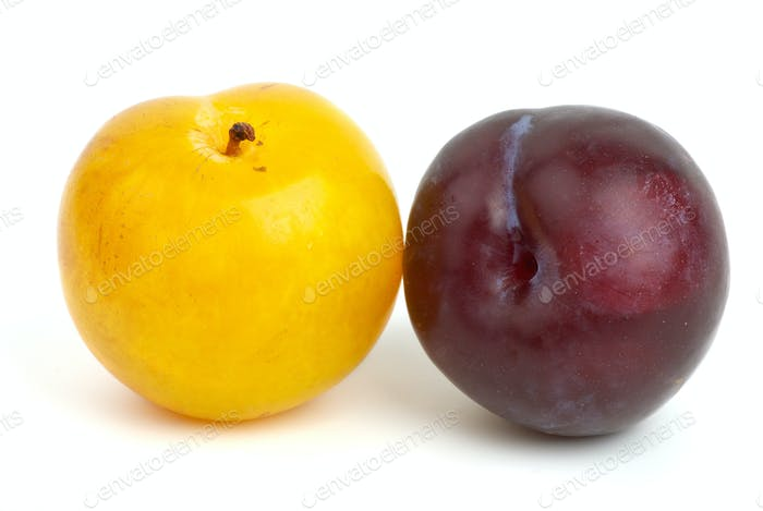 Yellow and violet plums