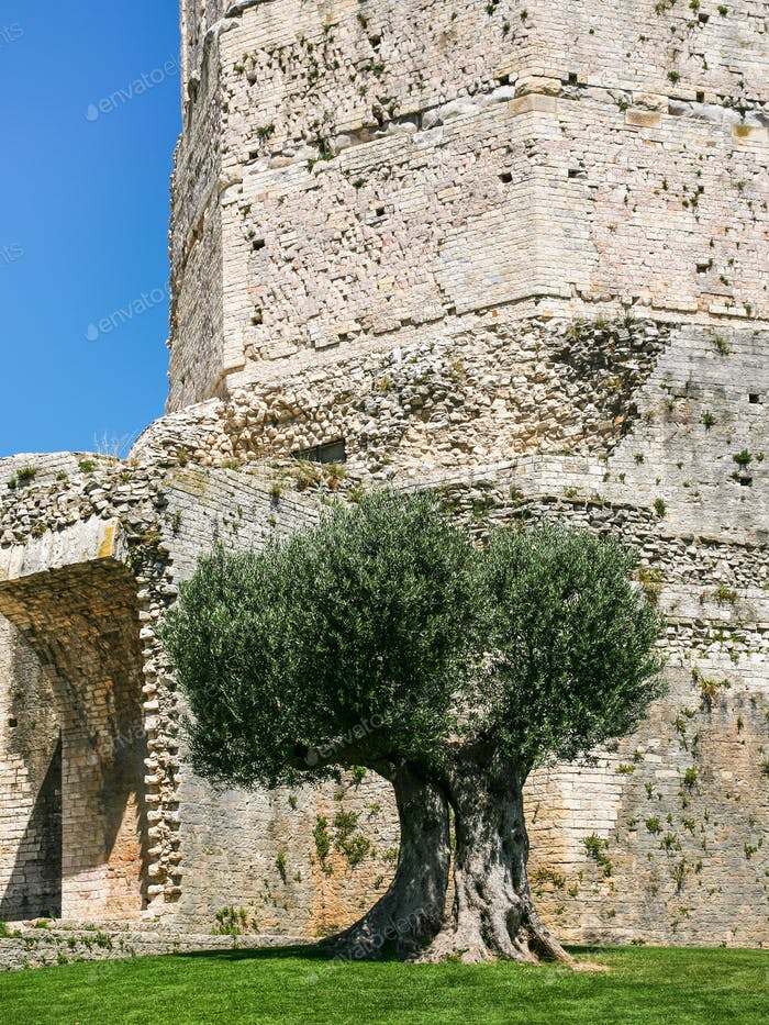 ancient Tour (tower) Magne in Nimes city
