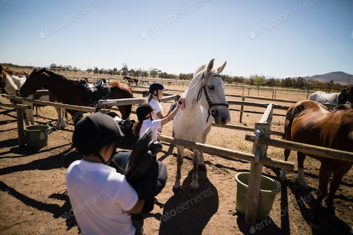 Girls grooming the horse in the ranch