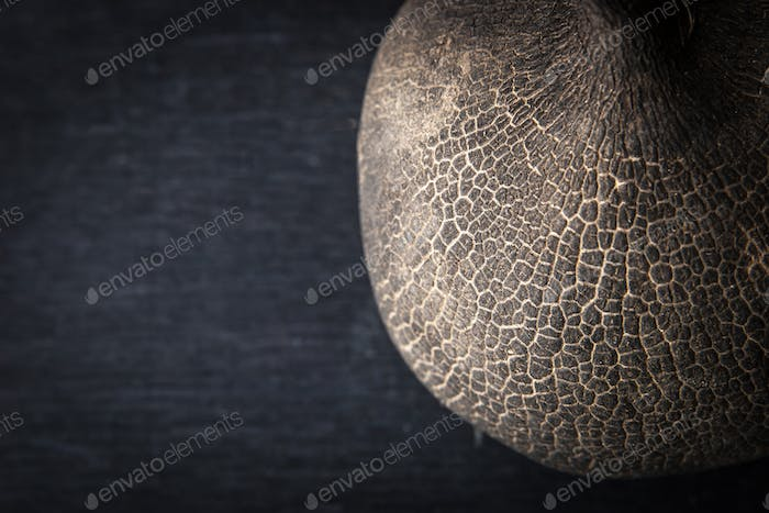 Black radish on the dark background top view