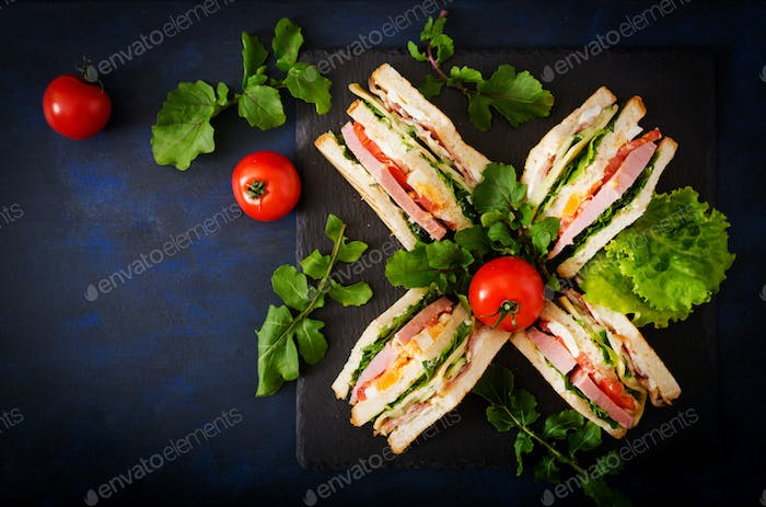 Club sandwich with ham, bacon, tomato, cucumber, cheese, eggs and herbs on dark background. Top view