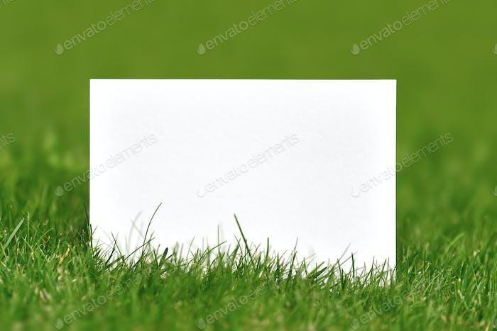 Papel en blanco sobre hierba verde