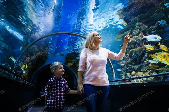 Family watchig fishes at a aquarium