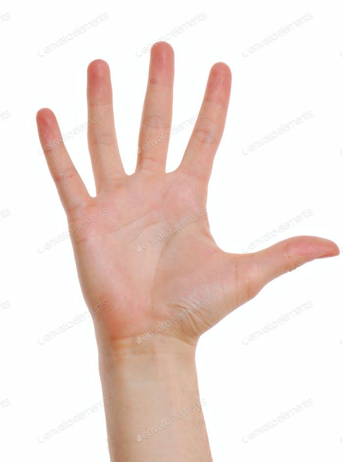 Mann Hand