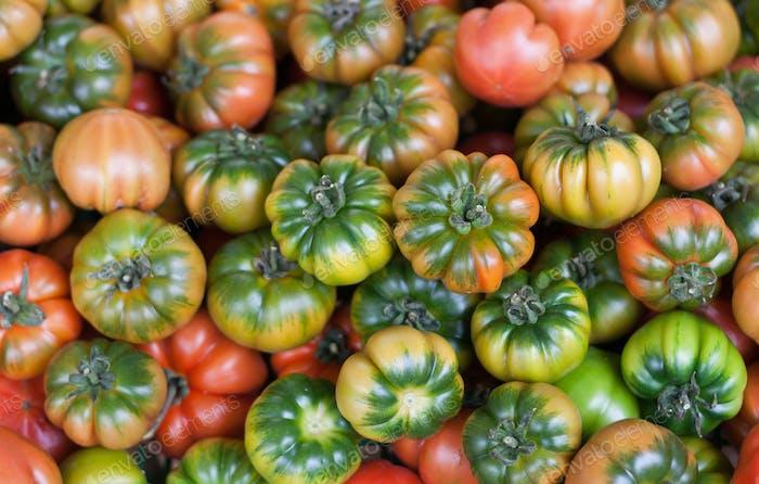 Fresh Italian Costoluto tomatoes on display at an outdoors farme