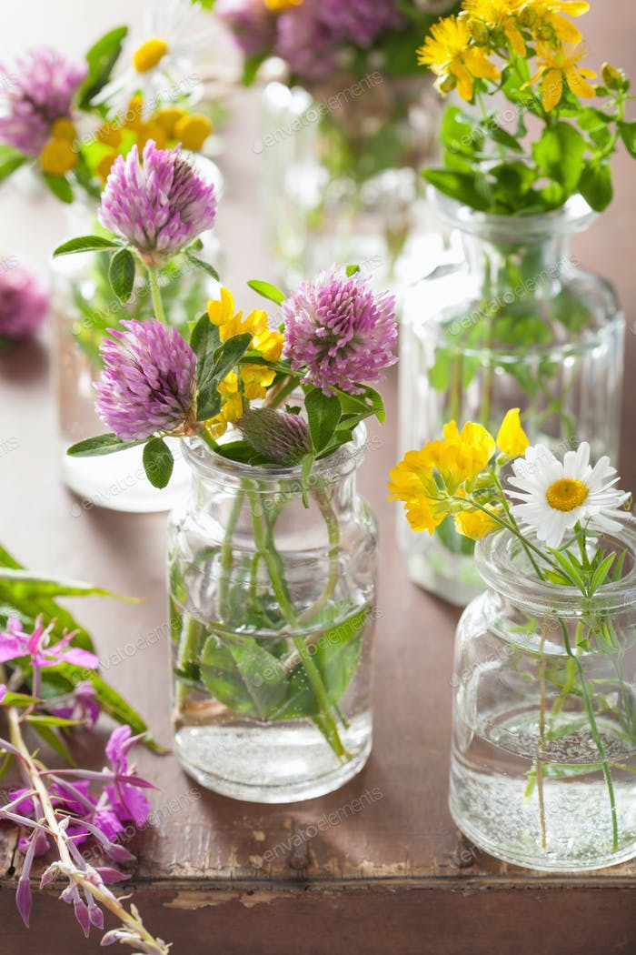 colorful summer medical flowers and herbs in jars