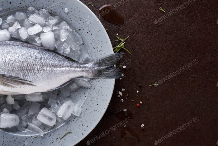 Fresh dorado on ice platter at black background
