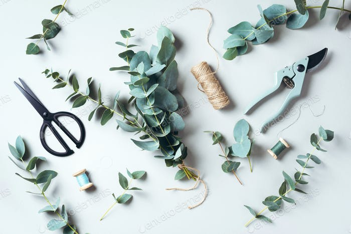 Eucalyptus bouquet creating with baby blue eucalyptus branches over grey background. Florist work
