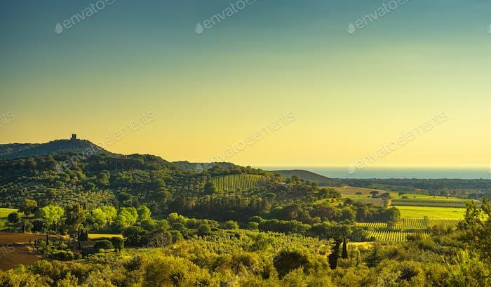 Bolgheri und Castagneto Weinberg Luftbild auf Sonnenuntergang. Maremma