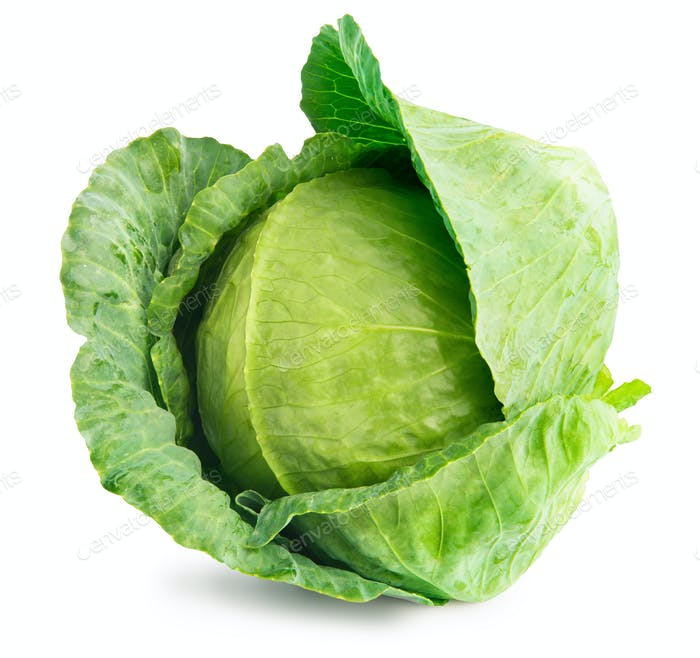 Head Green Cabbage