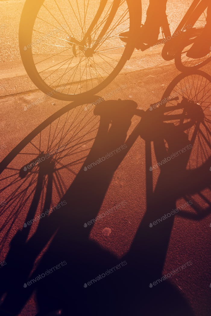 Shadow of unrecognizable cyclist on teh road
