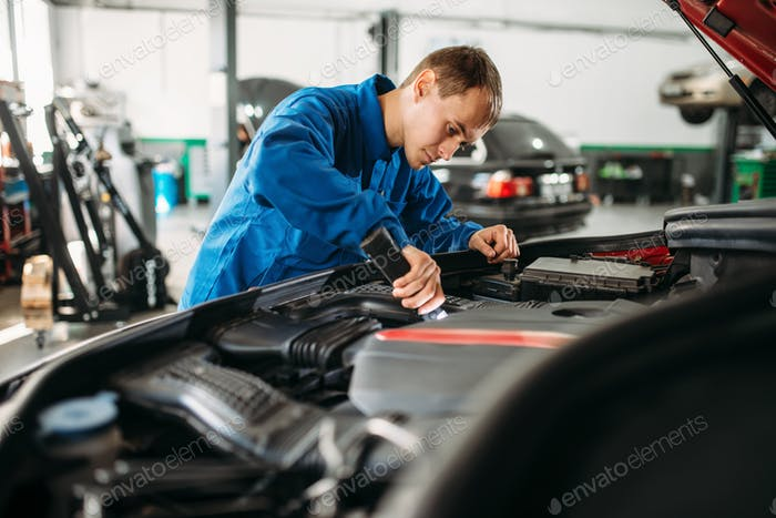 Mechanic checks engine compartment of the vehicle