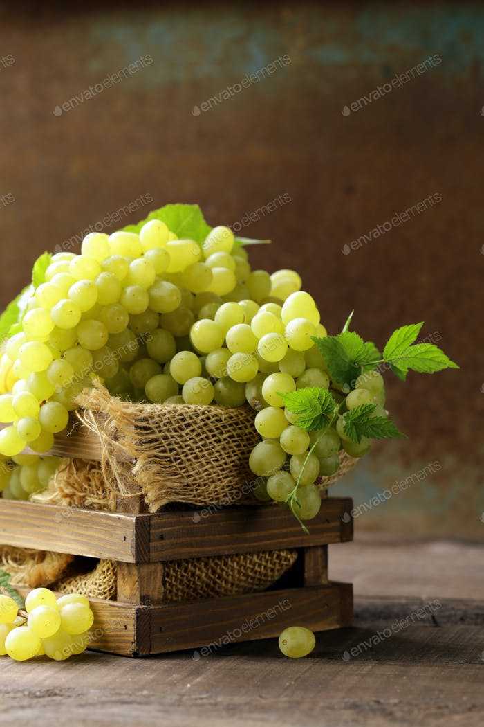 White Green Grapes