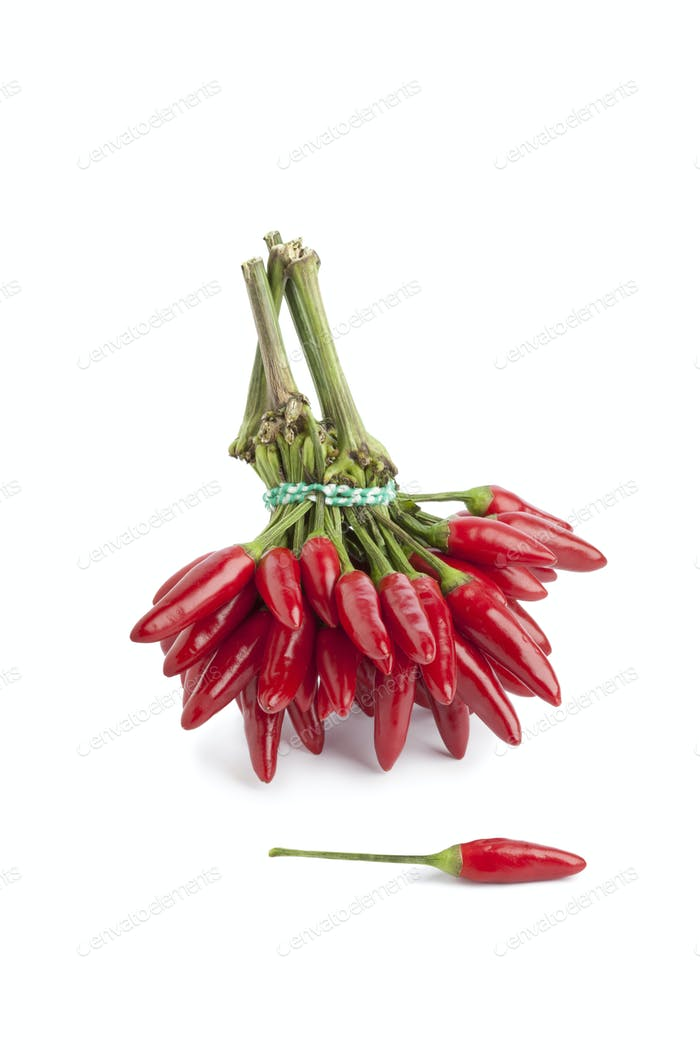 Bunch of fresh tabasco peppers