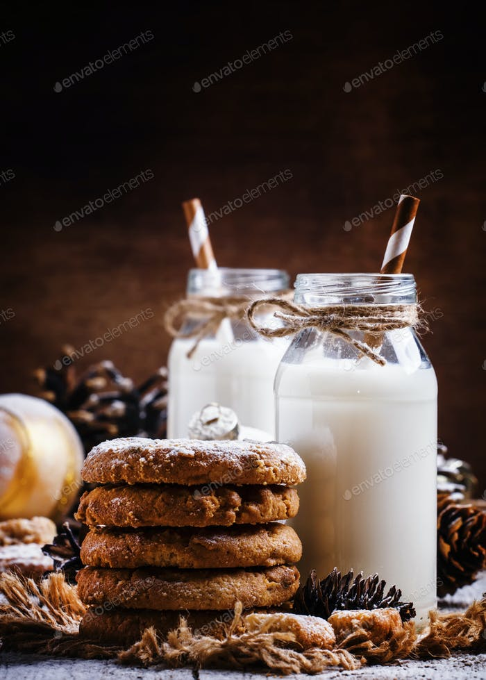 Christmas cookies and warm milk in bottle