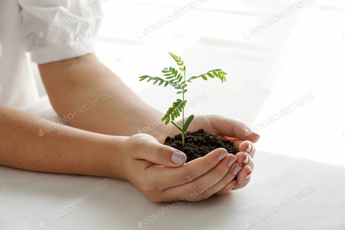 a woman holding a green plant in palm of her hand