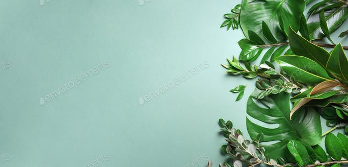 Tropical leaf frame on green background with copy space. Flat lay. Top view. Summer or spring nature