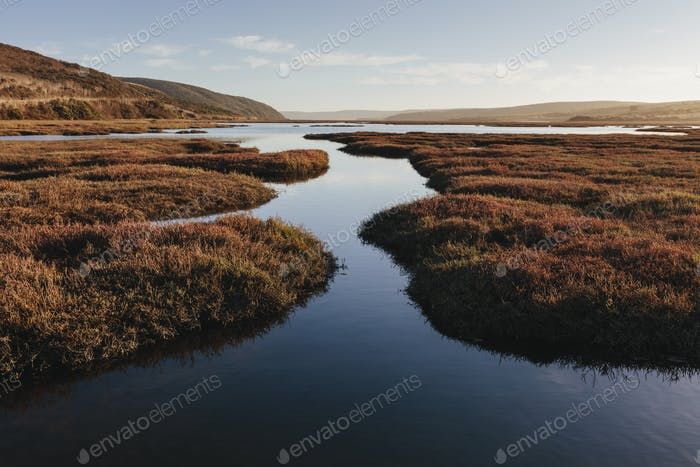 Intertidal estuary with water channels at dusk