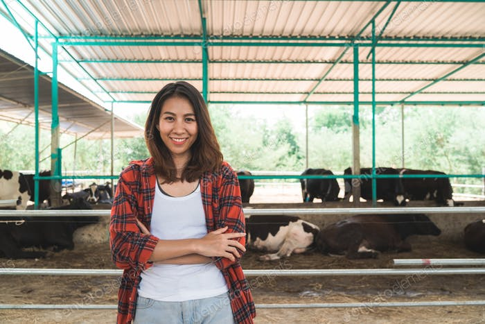 woman or farmer with and cows in cowshed on dairy farm-Farming, and animal husbandry.