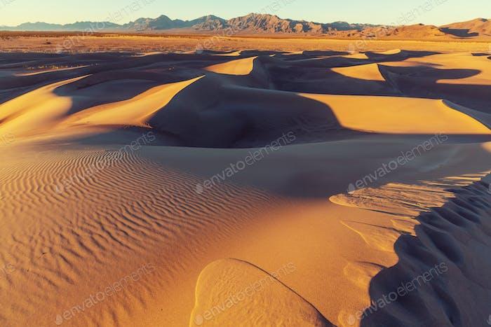 Wanderung in der Wüste