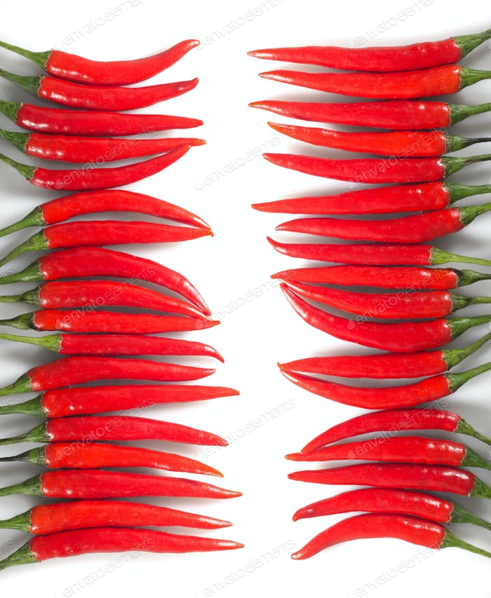 Two rows of red chili peppers