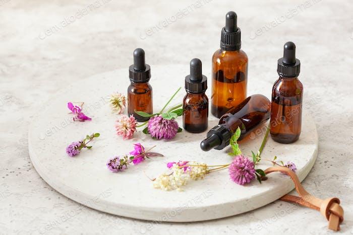 medical flowers herbs essential oils in bottles. alternative med