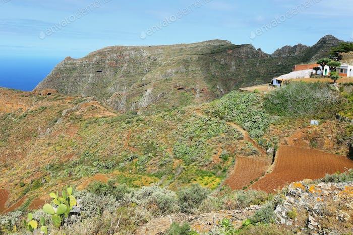 Chinamada, Tenerife, Canary Islands, Spain
