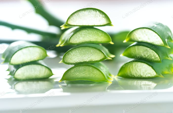 Fresh leaves of Aloe Vera on the white background