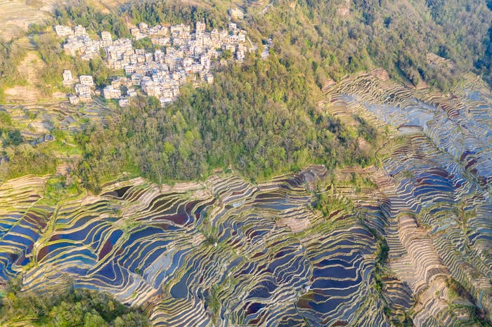 beautiful yuanyang hani terraced field landscape