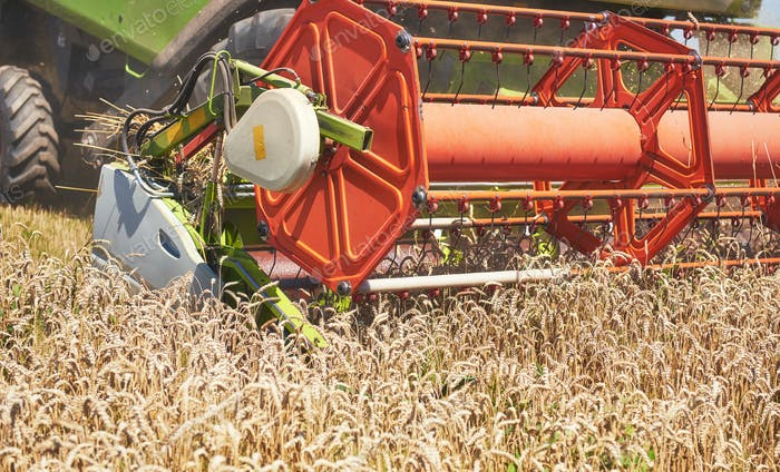 visión cercana de la cosechadora moderna en acción