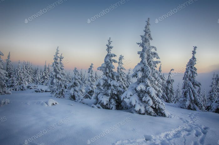 Winter at mountains
