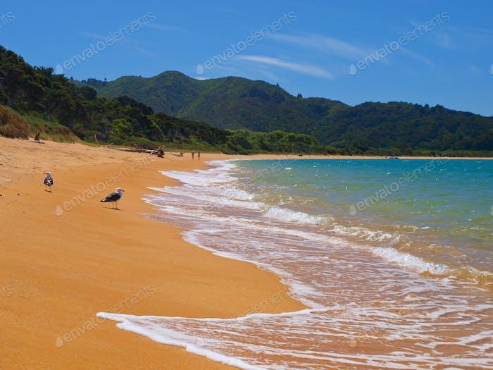 Totoranui Beach