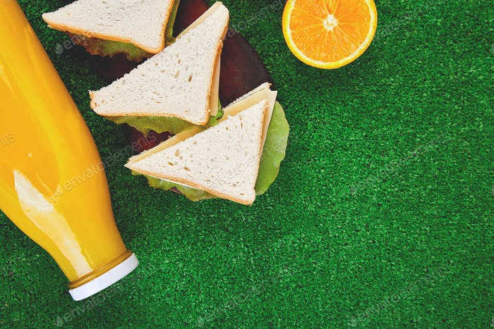 Picnic on the grass. healthy food sandwich and fruit, orange juice