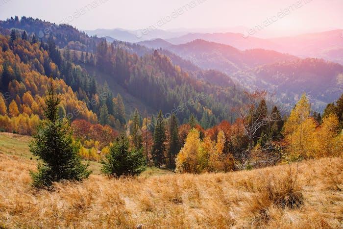 Szenische Herbstlandschaft