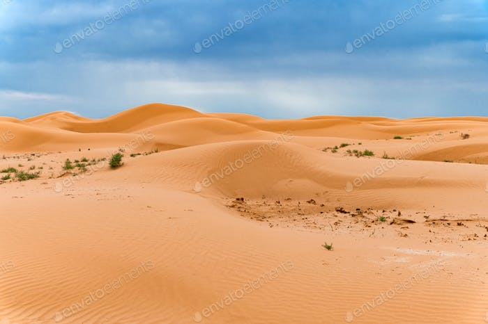Picturesque desert landscape with dunes and dramatic sky